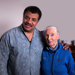 Into the Wild, with Jane Goodall
