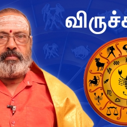 Viruchika Rasi Guru Peyarchi Palangal 2016 to 2017