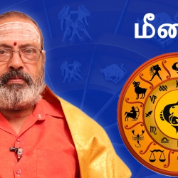 Meenam Rasi Guru Peyarchi Palangal 2016 to 2017