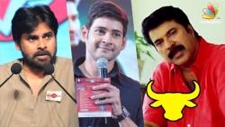 Mammootty, Mahesh Babu, Pawan Kalyan Extend Support For Jallikattu Protest