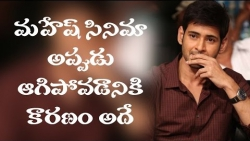 Real reason why that film of Mahesh Babu was shelved