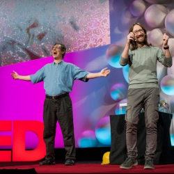 The wonderful world of life in a drop of water | Simone Bianco and Tom Zimmerman