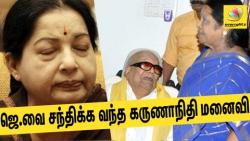 Karunanidhis wife Rajathi Ammal meets Sasikalaa enquires about Jayalalithas health
