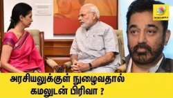Kamal & Gowthami's split because of politics?