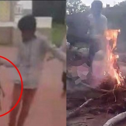 Shocking: Young boys burn three puppies alive in Hyderabad