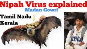 Nipah Virus explained
